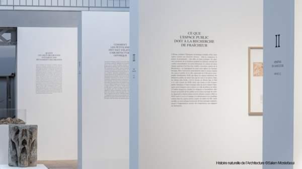 Expo : L'histoire naturelle de l'Architecture