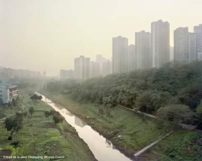 Cyrus Cornut, ville et nature dans le viseur
